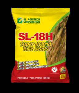Hybrid Rice Seeds – SL-Agritech